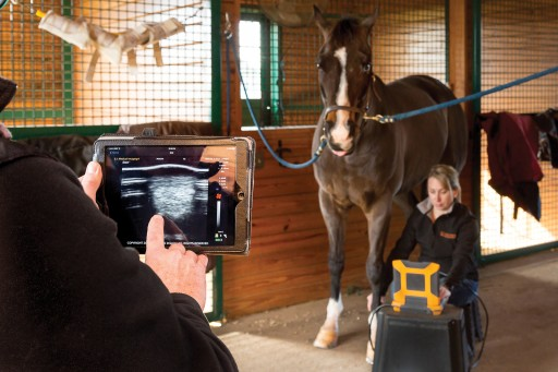 E.I. Medical Imaging Introduces EVOStream™ for Live Streaming of Ultrasound Images