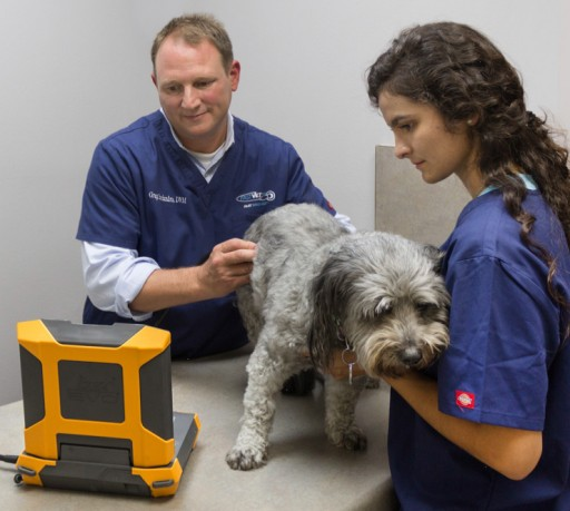 E.I. Medical Imaging Introduces Partnership with FASTVet for Companion Animal Training